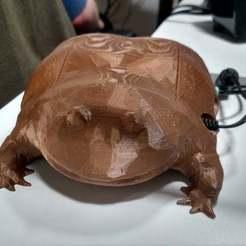 Download free 3D printer designs Wednesday Frog Raspberry Pi Case, terraprint