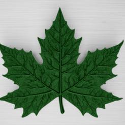 Maple leaf.png Télécharger fichier OBJ Feuille d'érable • Modèle à imprimer en 3D, WorldOfPoligons