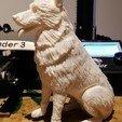 Download free STL file East-European (German) Shepherd dog ( remix challenge ) • Template to 3D print, morganne-farrah