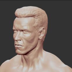 3.PNG Download OBJ file ARNOLD SCHWARZENEGGER • 3D print object, penta_studio