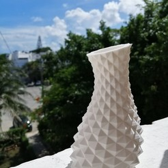 IMG_20200918_143416.jpg Download STL file Flower Vase twisted Pineapple • 3D printer object, Arkc