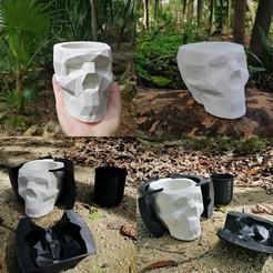 IMG_20201121_132032.jpg Télécharger fichier STL Moule à crâne géométrique • Design à imprimer en 3D, Arkc