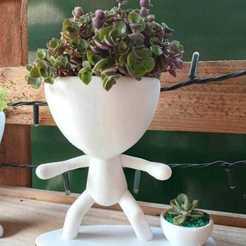 Télécharger fichier STL ROBERT PLANT REMIXE LES POTS DE SURF D'INTÉRIEUR • Modèle à imprimer en 3D, my3dlabec