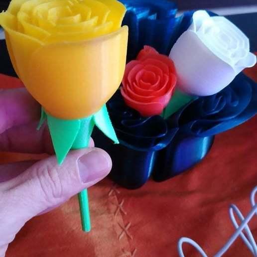 IMG_20181012_160246.jpg Télécharger fichier STL gratuit vase avec des roses • Design imprimable en 3D, Hazon_Maker
