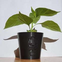 20200813_175115_1.jpg Download free STL file Planter Mini Groot • 3D print template, nicking3d