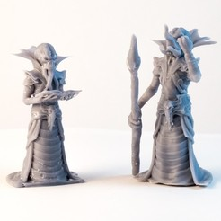 DSC02452.jpg Download STL file Mind Flayer - 3D printable character - 2 Poses 3D print model • 3D printable model, DCA-tabletop