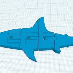 moving-shark