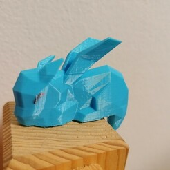 IMG_20210117_164035.jpg Download STL file Low poly cute sleeping dragon (Spyro) • 3D printable model, Aboutexodma