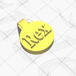 Dogtag.JPG Download STL file Dogtag name Rex • 3D printing model, Aboutexodma