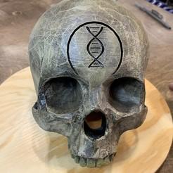 Painted.jpg Télécharger fichier STL Halo IWHBYD (I Would Been Your Daddy) Skull • Plan imprimable en 3D, SplinterPrintz