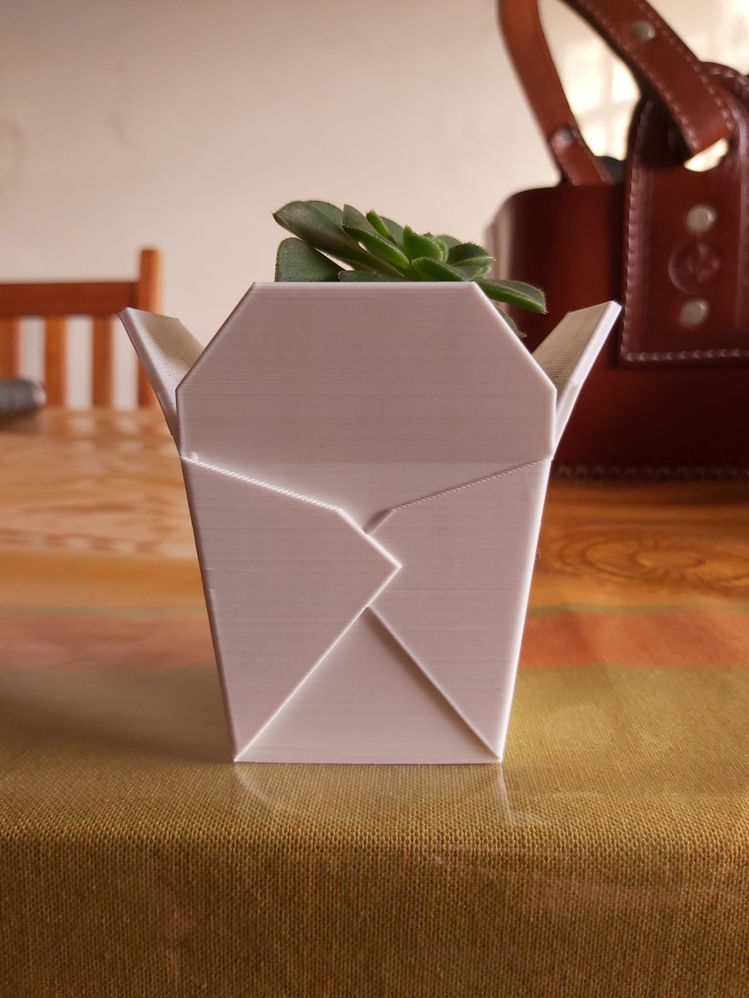 bis.jpg Télécharger fichier STL Boîte à emporter chinoise, succulent PLANTER • Design imprimable en 3D, nachitox