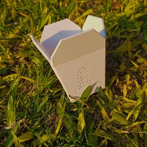 macet 1.jpg Télécharger fichier STL Boîte à emporter chinoise, succulent PLANTER • Design imprimable en 3D, nachitox