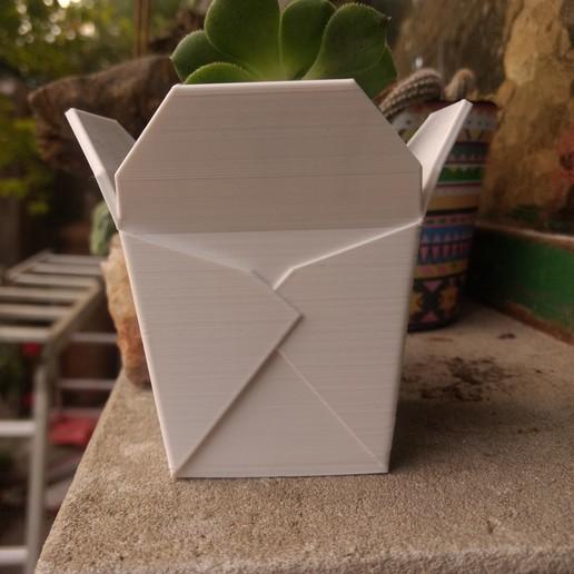 img5.jpg Télécharger fichier STL Boîte à emporter chinoise, succulent PLANTER • Design imprimable en 3D, nachitox