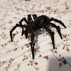 Download free 3D printing designs Wolf Spider Remixed, Samdsx