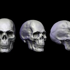 skullcapa.jpg Download OBJ file Skull Head • 3D print design, conti3d