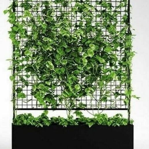 sar.jpg Download STL file botanical planter • 3D printer template, printex