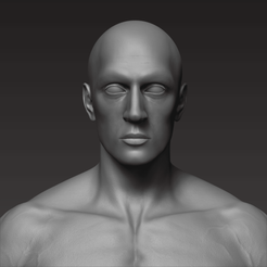 11.png Download STL file Anatomically correct muscular male body Low and High Poly Low-poly 3D model • 3D printer model, jessecl