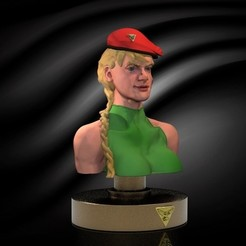 cammy.200.jpg Download free STL file Cammy  • 3D print object, gilafonso