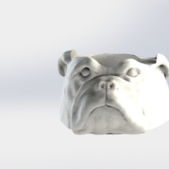 Buldog.JPG Download STL file Mate Bulldog • 3D printer object, gino2206