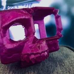 IMG_2901.jpg Télécharger fichier STL gratuit Monture Skyeliner HD Skull GoPro Hero 7 • Modèle à imprimer en 3D, theFPVgeek