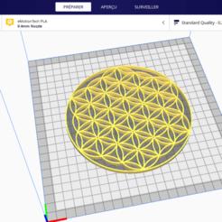 Sans titre.png Télécharger fichier STL gratuit Fleur de vie • Plan à imprimer en 3D, Six3Dprinting