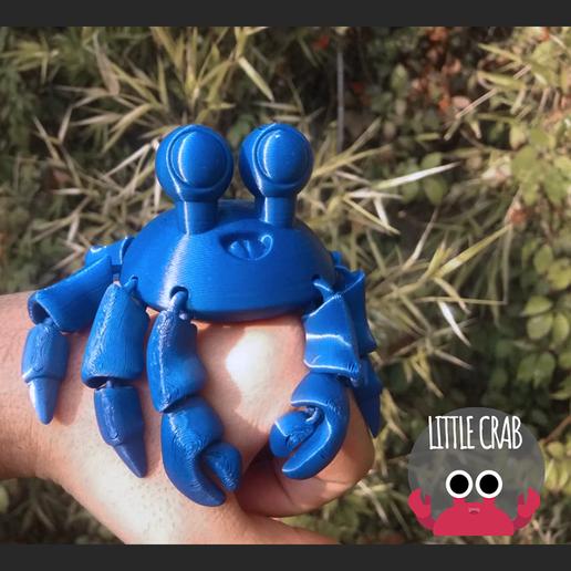 portada cults.png Download STL file Cute Little Crab - Flexi crab • 3D printer object, AxelX04