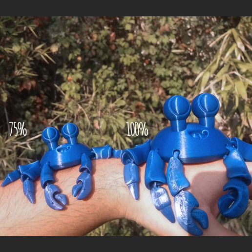 secuencia cultrs.png Download STL file Cute Little Crab - Flexi crab • 3D printer object, AxelX04