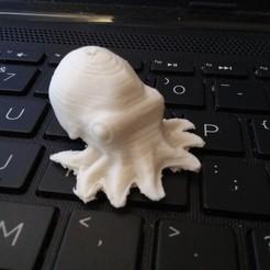 20201102_090230.jpg Download STL file micro octopus • 3D printer template, ammonite5665