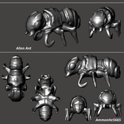 AlienAntPic.jpg Download STL file Alien Ant • 3D printing template, ammonite5665