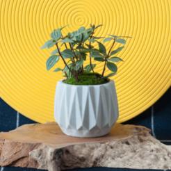 POT.png Download STL file PLANT POT • 3D printable object, ggnctrkk