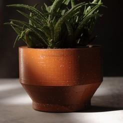 dsadasd.jpg Download free STL file Succulent Planter 2 • 3D print template, rufinomedranolagunas