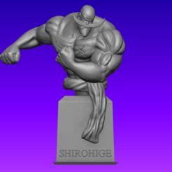ShirohigePrint.png Télécharger fichier STL Buste de Shirohige : une pièce (original) • Modèle imprimable en 3D, BSnake