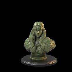 Celtic Lady.59.90.jpg Descargar archivo STL El busto de una dama celta se presupone • Modelo para la impresión en 3D, TytanTroll_Miniatures
