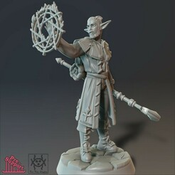 Sorcerer0102.jpg Download STL file Adventurer - Sorcerer • 3D printing model, tri_fin_studio