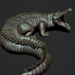 bas3.jpg Download STL file crocodile • 3D printable design, genesissarahy