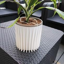 IMG_20200905_202101.jpg Télécharger fichier STL Flower pots • Design pour imprimante 3D, remypuddu