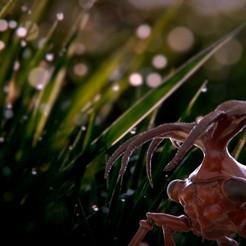 jose-ramon-fernandez-render2.jpg Download 3MF file Insect Treehoper • 3D printable design, Noobjose