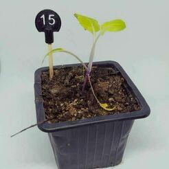 eti numero 1234 lepotagerpiments.jpg Download free STL file 3D vegetable garden label num 1 2 3 4 • 3D printable template, lepotagerpiments