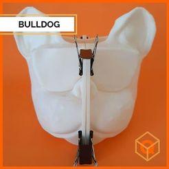 119885659_646315832926546_3711976735736009274_n.jpg Télécharger fichier STL MOISISSURE DE BOULEDOGUE FRANÇAIS • Design pour imprimante 3D, lucas1998