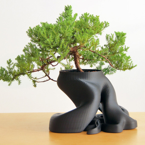 Free 3D printer model Bonsai Planter, gCreate