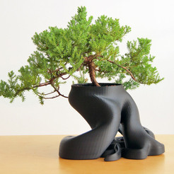 Free Bonsai Planter 3D model, gCreate