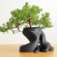 A.jpg Download free STL file Bonsai Planter • 3D printing model, gCreate