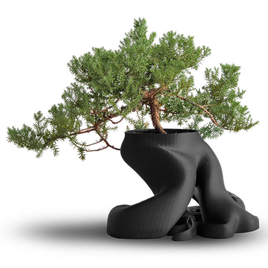 C.jpg Download free STL file Bonsai Planter • 3D printing model, gCreate
