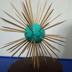 DSC_2872.JPG Download free STL file Sea urchin • 3D printing model, hsiehty