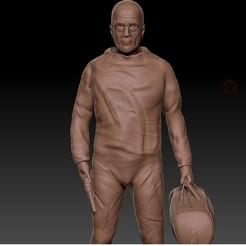2221.jpg Télécharger fichier STL Walter White (Breaking Bad). • Plan pour imprimante 3D, Shmel