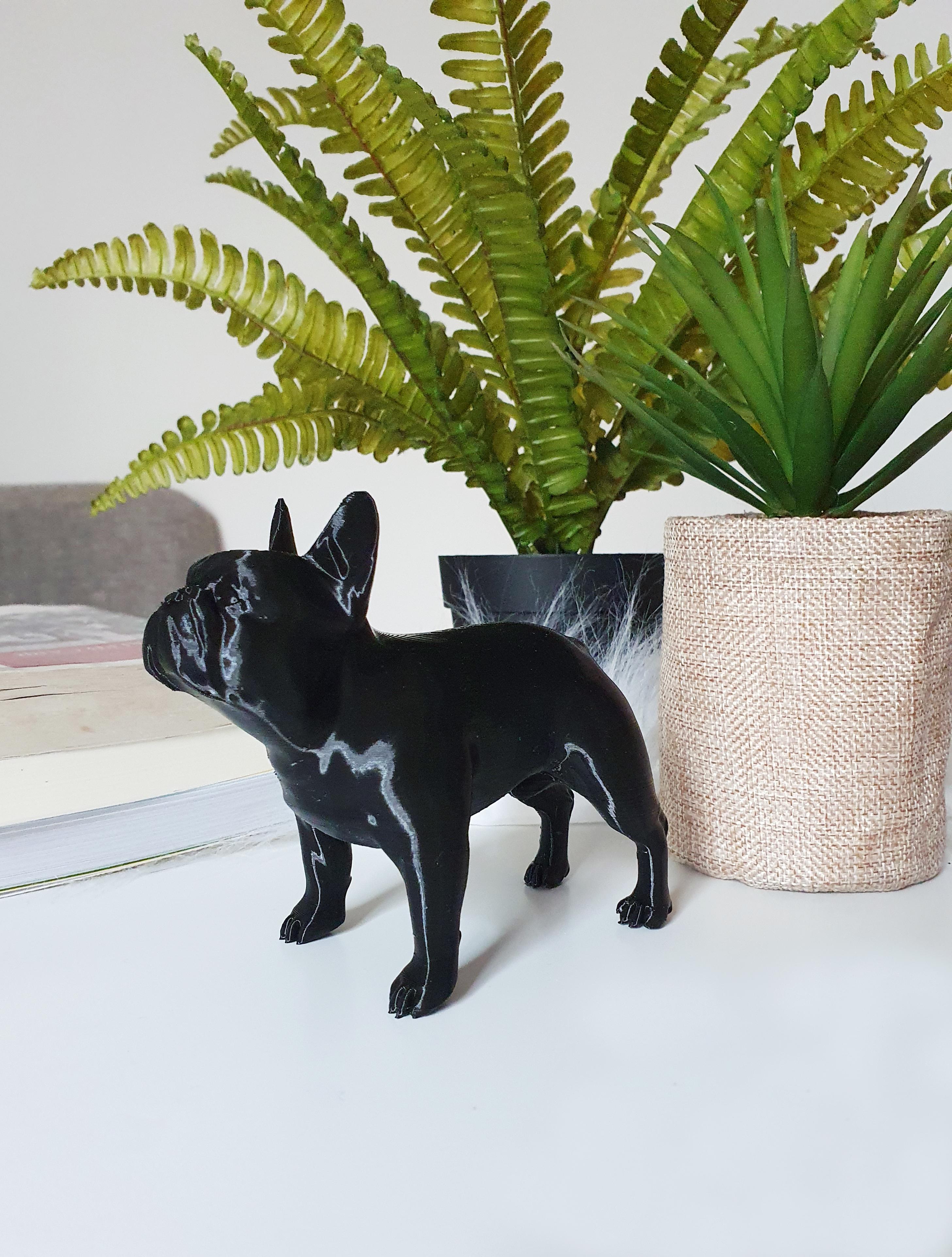 4.jpg Download free STL file Perro Bull Dog FRENCH BULLDOG DOG • 3D printable object, PRODUSTL56