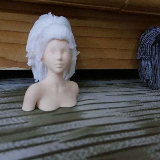 20201016_020212.jpg Télécharger fichier STL gratuit Elf Bust - Une expérience pour des parties séparées • Plan pour imprimante 3D, okMOK