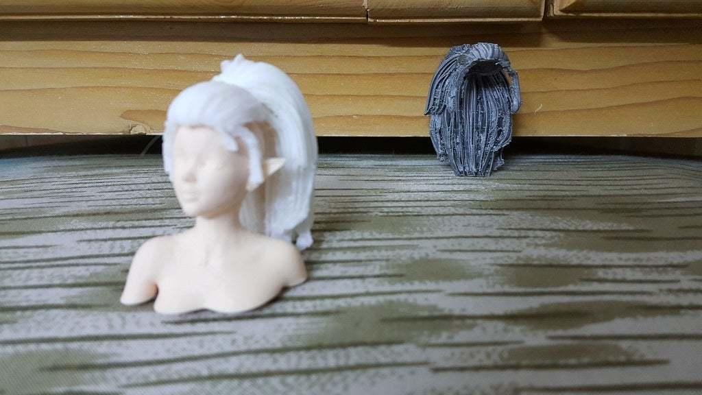 20201016_020132.jpg Télécharger fichier STL gratuit Elf Bust - Une expérience pour des parties séparées • Plan pour imprimante 3D, okMOK