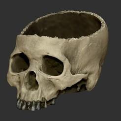Skull Bowl1.jpg Télécharger fichier STL gratuit Halloween Skull Bowl • Objet imprimable en 3D, TJDesigns