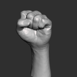 Autodesk Meshmixer - puno.mix 06_10_2020 11_11_20 p. m. (2).png Download STL file Hand fist • Design to 3D print, armandotrujillo